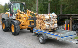 Loading firewood on trailer 2