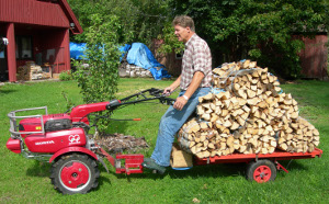 Transportation of firewood bundles